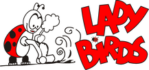 Ladybirds Cleaning Services - Domestic & Commercial Cleaning Cardiff